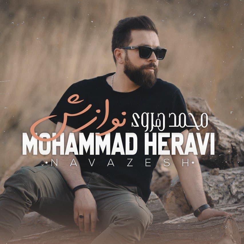 دانلود اهنگ محمد هروی نوازش